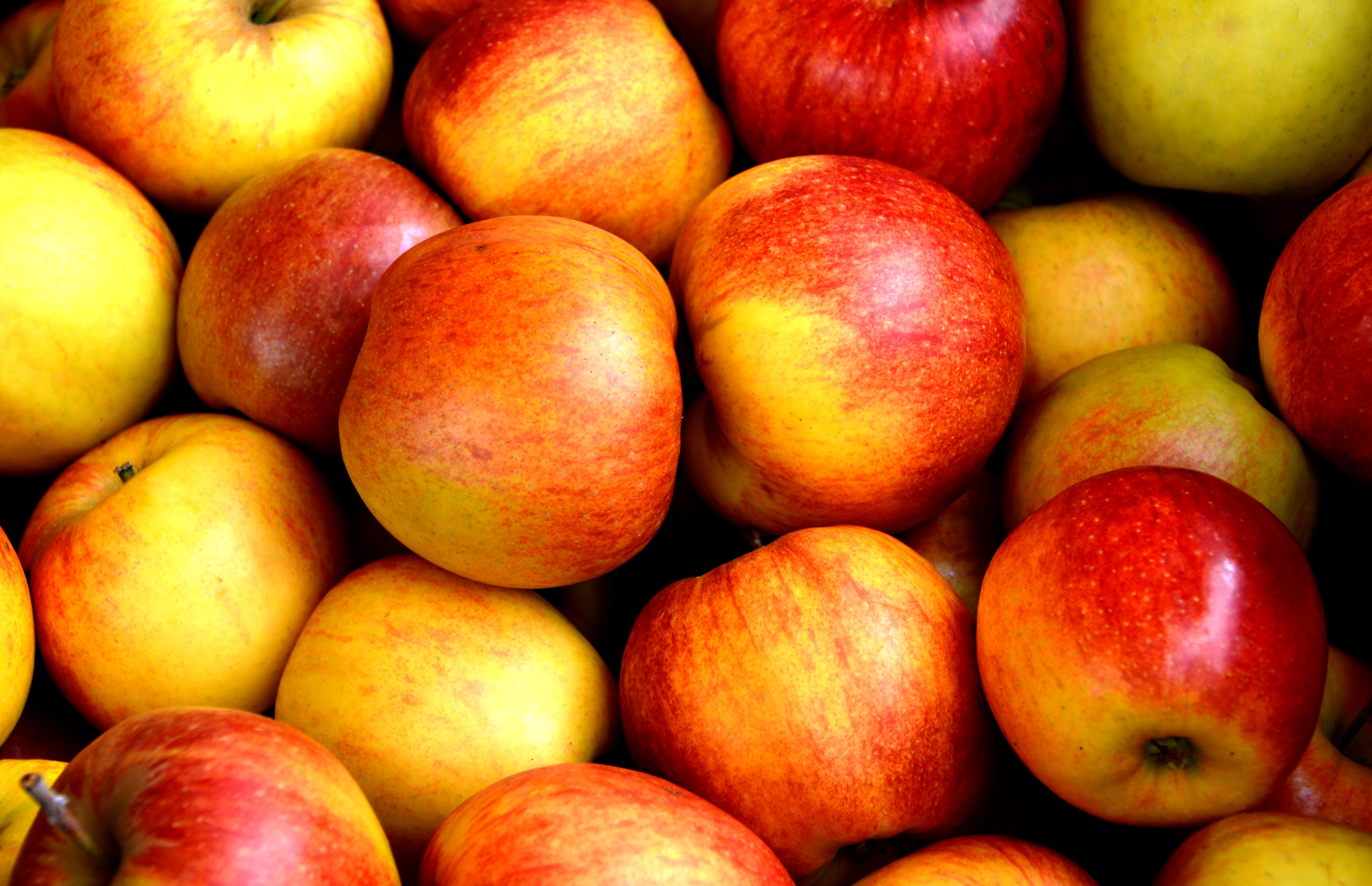 apples-close-up-delicious-162806
