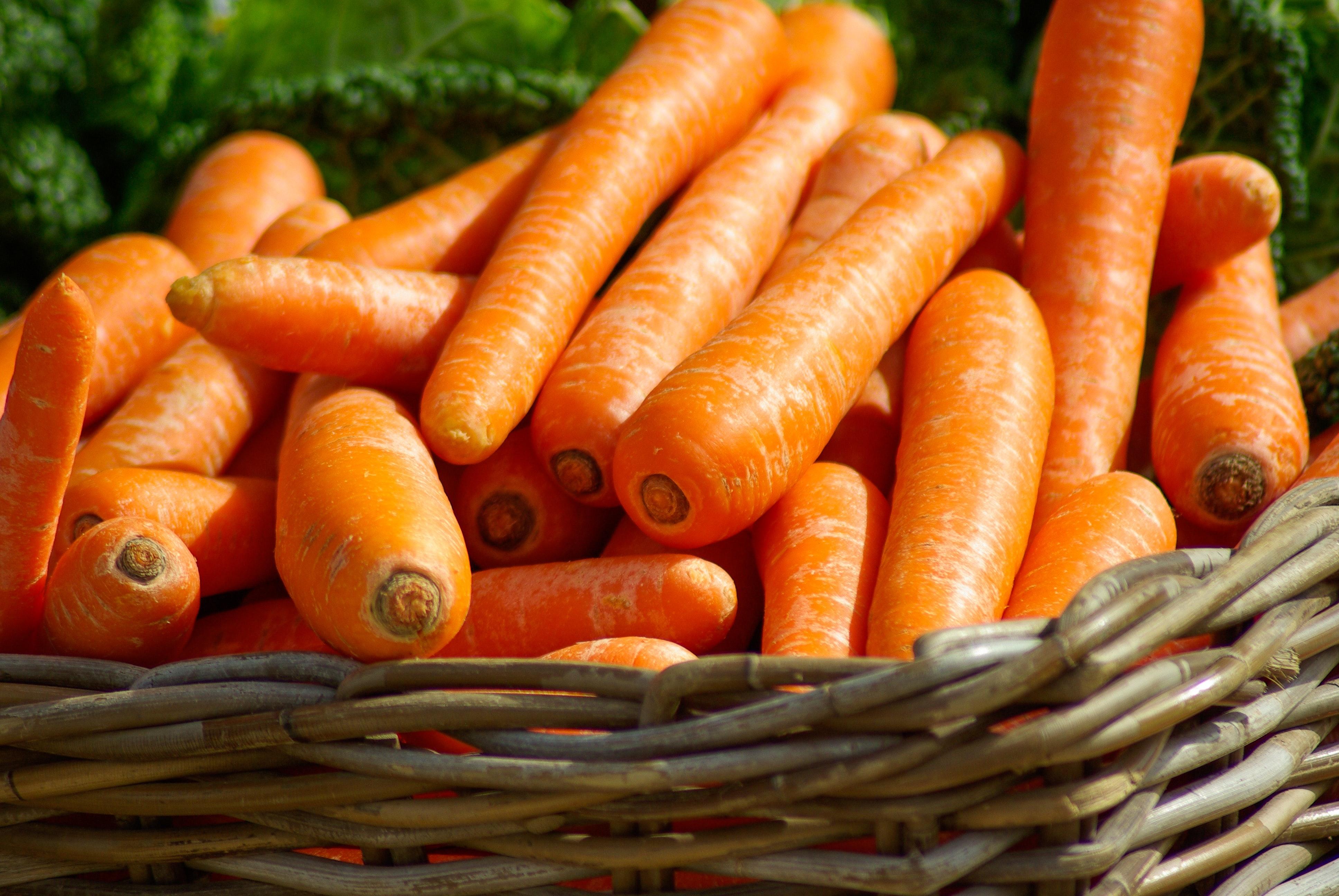 basket-carrots-close-up-37641